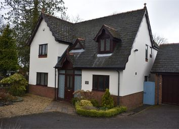 Thumbnail 4 bed detached house to rent in Cottage View, Devauden, Chepstow, Monmouthshire