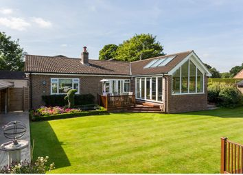 Thumbnail 4 bedroom detached bungalow for sale in Valuation Lane, Boroughbridge, York