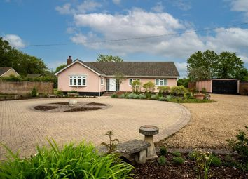 Thumbnail 4 bed detached bungalow for sale in Hall Road, Bedingfield, Eye