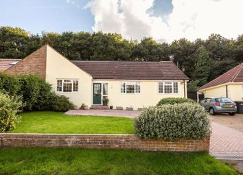 Thumbnail 5 bedroom bungalow for sale in Harpesford Avenue, Virginia Water
