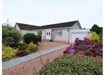 2 bed detached bungalow for sale in Moyness Park Drive, Blairgowrie PH10
