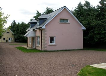 Thumbnail 2 bed property to rent in Coupar Angus Road, Blairgowrie