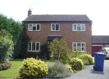 Thumbnail 4 bed detached house to rent in Wragg Drive, Newmarket