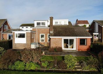 Thumbnail 4 bed detached house for sale in Maeshendre, Aberystwyth, Ceredigion