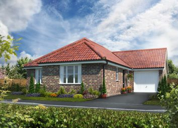 Thumbnail 3 bed detached bungalow for sale in Norwich Road, Watton
