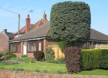 Thumbnail 3 bed detached bungalow to rent in Cornerway, 21 Old Boundary Road, Shaftesbury, Dorset