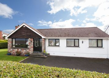 Thumbnail 4 bed bungalow for sale in Ashford Drive, Bangor