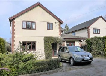 Thumbnail 4 bed detached house for sale in Llys Eithin, Gorslas, Llanelli
