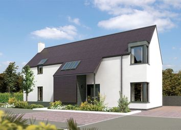 """Thumbnail 4 bedroom detached house for sale in """"Allardice"""" at Carron Den Road, Stonehaven"""