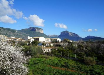 Thumbnail 6 bed villa for sale in Alaro, Mallorca, Spain