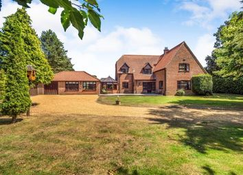 Thumbnail 4 bed detached house for sale in Ludham, Norwich, Norfolk