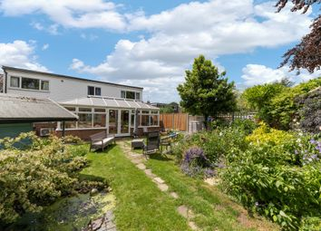 Thumbnail 4 bed property for sale in Willow Close, Reed, Royston