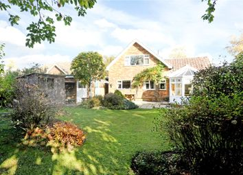 Thumbnail 3 bed detached house for sale in Cleve Way, Billingshurst, West Sussex
