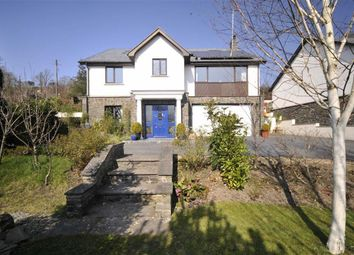 Thumbnail 4 bedroom detached house for sale in Carlton House, Capel Bangor, Aberystwyth, Ceredigion