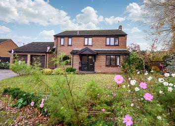 Thumbnail 4 bed detached house for sale in Bramble Way, Poringland