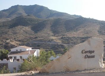 Thumbnail 6 bed country house for sale in Los Molinas, Albánchez, Almería, Andalusia, Spain