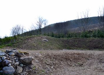 Thumbnail Land for sale in Plot At 66 Dalmore, Rogart