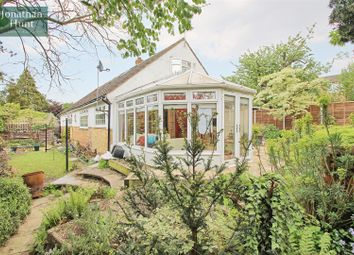 Thumbnail 4 bed detached bungalow for sale in Grasmere Road, Ware