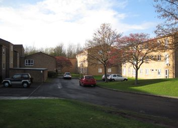 Thumbnail 2 bedroom flat to rent in Firbeck Walk, Thornaby, Stockton-On-Tees