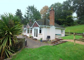 Thumbnail 4 bedroom detached bungalow for sale in Linford, Ringwood