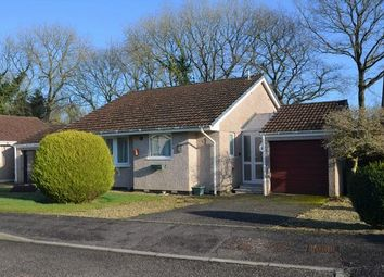 Thumbnail 2 bed detached bungalow for sale in Bluebell Road, Dunkeswell, Honiton