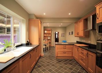 Thumbnail 3 bed semi-detached house to rent in Holliers Hill, Bexhill-On-Sea