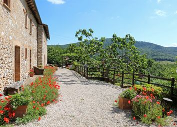 Thumbnail 8 bed farmhouse for sale in Ppge3213, Amelia, Terni, Umbria, Italy