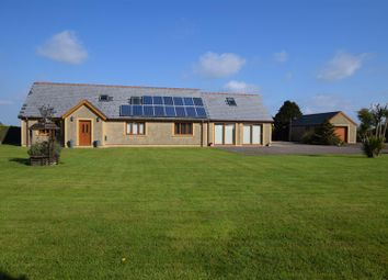 Thumbnail 5 bedroom detached bungalow for sale in New Road, Freystrop, Haverfordwest