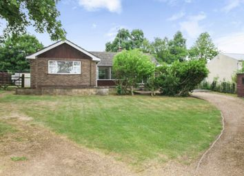 Thumbnail 3 bed detached bungalow for sale in Orchard Lane, Woodnewton, Peterborough