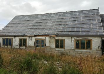 Thumbnail 3 bed detached bungalow for sale in Cottage, Gamrie, Banff, Aberdeenshire