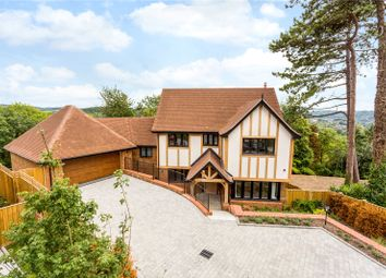 Thumbnail 5 bed detached house for sale in Plot 3, Butterfly Walk, Surrey