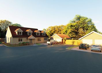Thumbnail 4 bed property for sale in Aingers Green Road, Great Bentley, Colchester