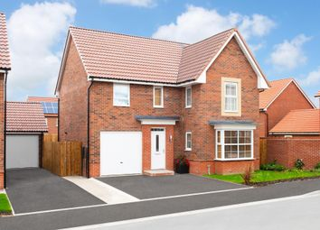 """Thumbnail 4 bed detached house for sale in """"Halstead"""" at Ripon Road, Kirby Hill, Boroughbridge, York"""
