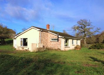 Thumbnail 3 bed detached bungalow for sale in Stockland, Honiton