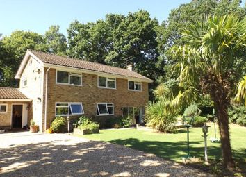 Thumbnail Property for sale in Wrecclesham, Farnham, Surrey