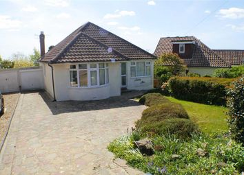 Thumbnail 2 bed bungalow to rent in Newling Way, Worthing
