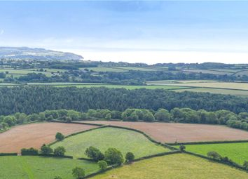 Thumbnail Land for sale in Branscombe, Seaton, Devon