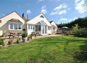 Thumbnail 3 bed detached bungalow for sale in Bocking Church Street, Braintree, Essex