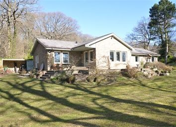 Thumbnail 4 bed detached bungalow for sale in North Lodge, Ovingham
