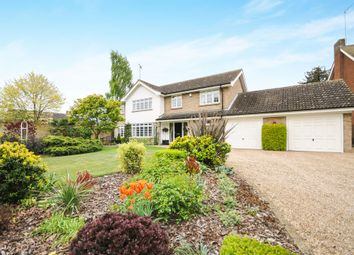 Thumbnail 4 bed detached house for sale in Witham
