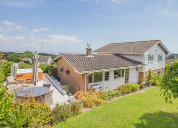 Thumbnail 4 bed detached bungalow for sale in Lydwell Park Road, Torquay