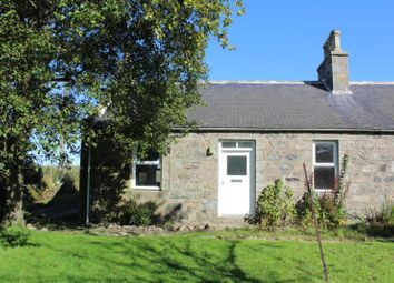 Thumbnail 2 bed semi-detached house to rent in Hillhead Of Fechil, Ellon