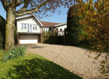 Thumbnail 3 bed detached bungalow to rent in Watford Road, Crick, Northampton