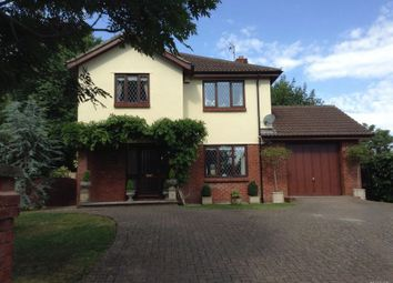 Thumbnail 4 bed detached house for sale in Newton Road, Torquay