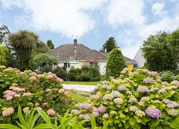 Thumbnail 4 bed bungalow for sale in Inner Loop Road, Beachley, Gloucestershire