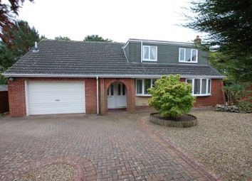 Thumbnail 4 bed detached bungalow for sale in Hollinhill, Rowlands Gill