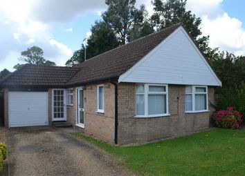 Thumbnail Bungalow to rent in Walsingham Court, Leverington, Wisbech