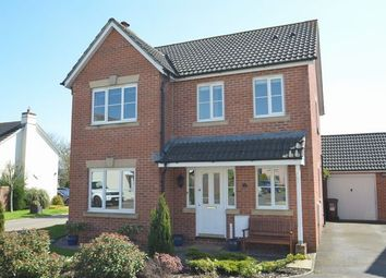Thumbnail 4 bed detached house for sale in Elderberry Way, Willand, Cullompton