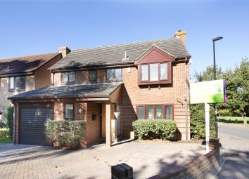 Thumbnail 4 bed detached house for sale in Primrose Lane, Croydon