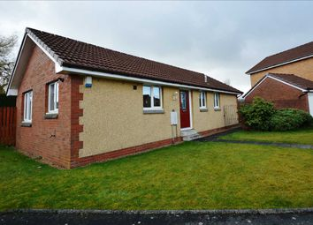 Thumbnail 3 bed bungalow for sale in Torlea Place, Larbert